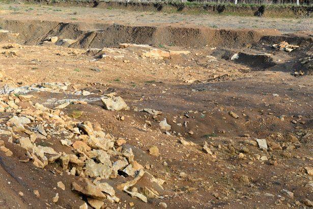 42 thi thể bị trói quặt tay trong trang trại cũ | News by Thaiger
