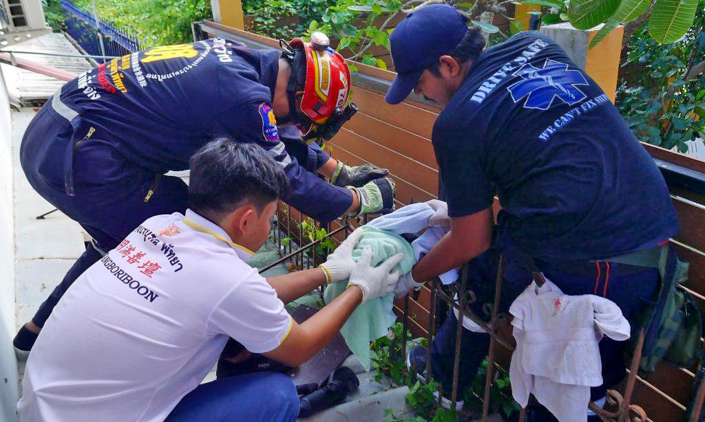 Pattaya pussy rescued after impaling itself on metal fence | News by Thaiger