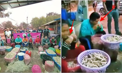 Chicken feet skin extracted by mouth, factory explains | Thaiger