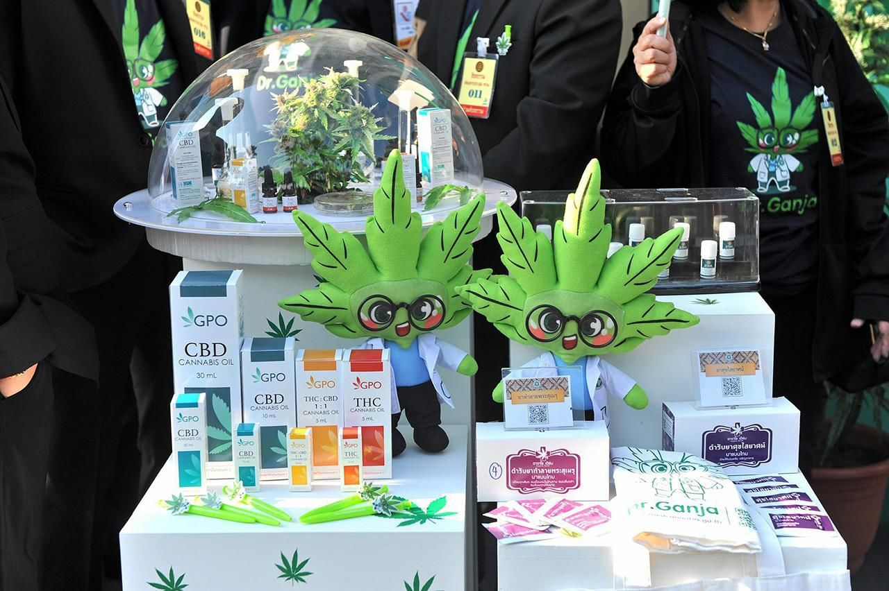 """""""Dr. Ganja"""" is helping promote medical marijuana in Thailand   News by Thaiger"""