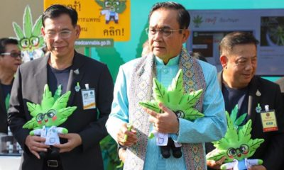 """Dr. Ganja"" is helping promote medical marijuana in Thailand 