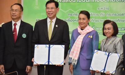 School of weed: Ministries preparing course on medical marijuana | Thaiger