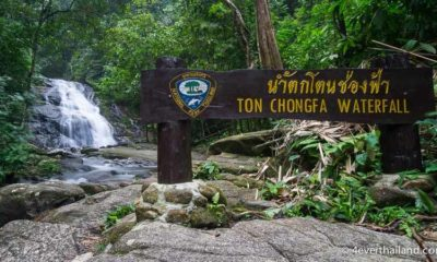 Australian rescued after falling from the top of Ton Chongfa waterfall in Phang Ngan | The Thaiger