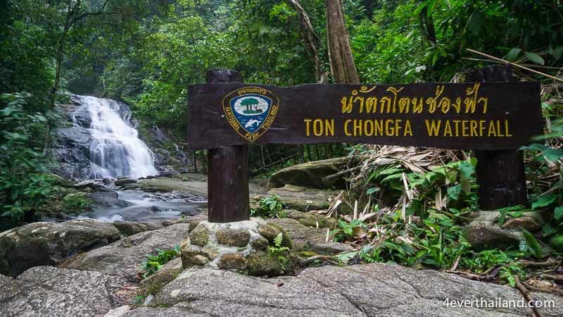 Australian rescued after falling from the top of Ton Chongfa waterfall in Phang Ngan   The Thaiger