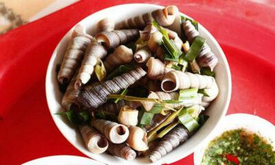 Quảng Bình: 1 người chết 7 người nguy kịch do ăn ốc biển | The Thaiger