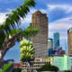 Bangkok's vacant land owners growing fruit and vegetables to evade vacant-land tax | Thaiger