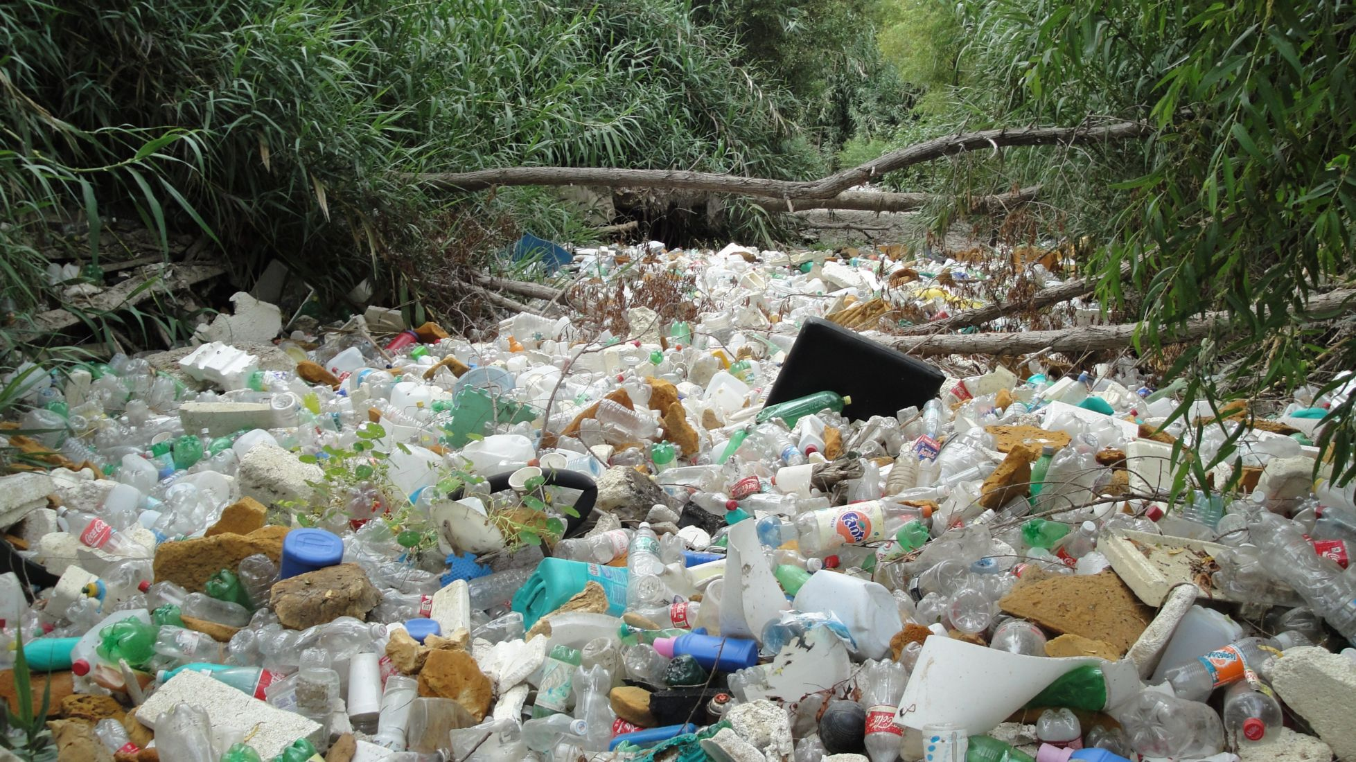 Single-use plastic bag ban just the beginning – Thai Minister | The Thaiger