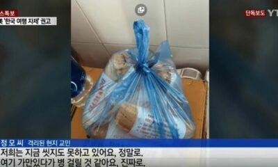 Hashtag #ApologizeToVietNam lọt top Trending vì du khách Hàn Quốc tại Đà Nẵng từ chối cách ly dịch corona | The Thaiger