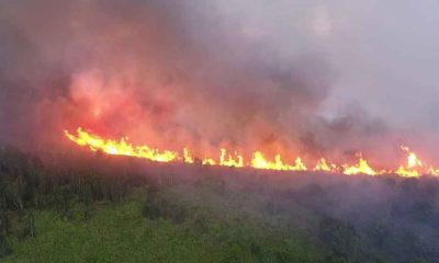 Fires continue devouring Thailand's North | Thaiger