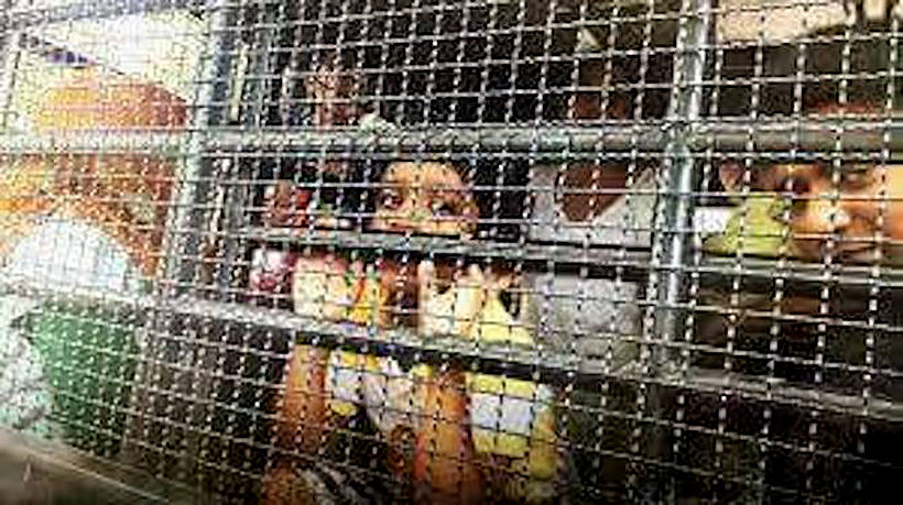 Regional news source publishes smuggled photos from Bangkok's Immigration Detention Centre | News by Thaiger