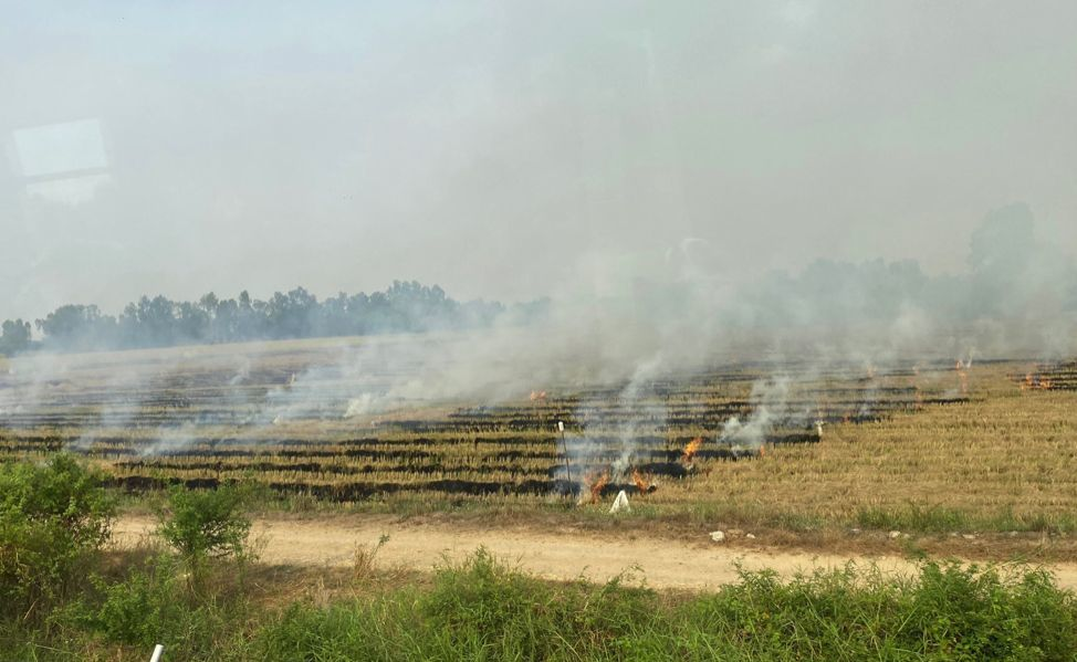 Smoke from plantation fires continues to choke central and northern Thailand