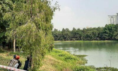 Bình Dương: 2 người chết đuối tại hồ nước trong công viên   The Thaiger