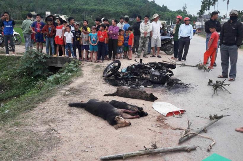 """2 """"cẩu tặc"""" trộm chó bị đánh chết ở Nghệ An   Thaiger"""