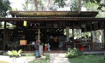 ผีน้อยเข้าร้านอาหารดังภูเก็ต สั่งปิด 3 วัน | The Thaiger
