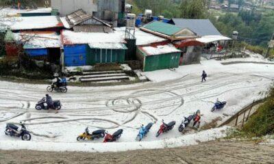 Lai Châu: Mưa đá gây thiệt hại nặng nề tài sản và hoa màu   Thaiger