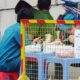 Cập nhật dịch COVID-19 tại Việt Nam: Thêm 14 ca dương tính nCoV, nâng tổng số bệnh nhân lên 113 người | The Thaiger