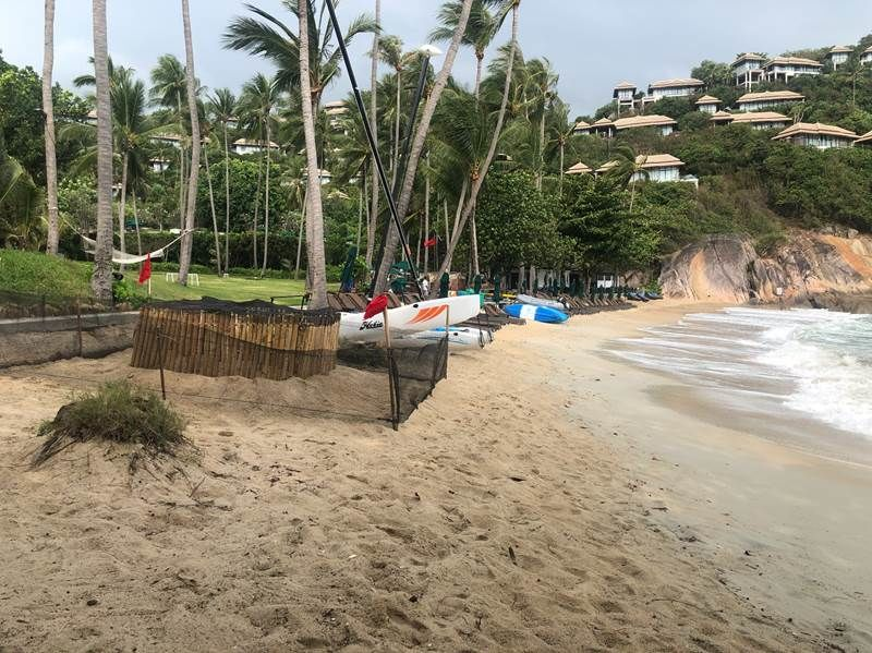 Samui's Banyan Tree Hotel acts to protect sea turtle nest | News by Thaiger