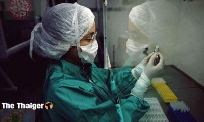 COVID-19: Phân biệt các triệu chứng của virus corona với cúm, cảm lạnh, dị ứng | Thaiger