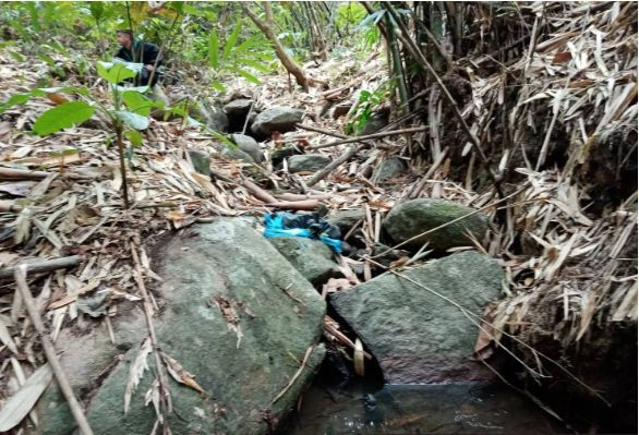 300,000 methamphetamine pills found in Chiang Rai after smugglers flee | News by Thaiger
