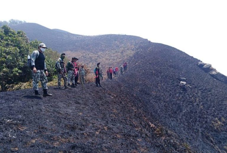 Chiang Mai hiking spots go up in flames   News by Thaiger
