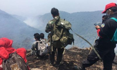 Chiang Mai hiking spots go up in flames | The Thaiger