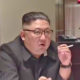 "North Korean leader reportedly in ""vegetative state""   Thaiger"