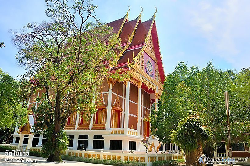 Broke and stranded, Russian tourists take shelter in Phuket temple | News by Thaiger