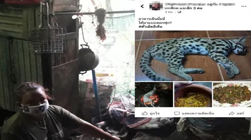 Woman cooks and eats Leopard, posts her kitchen skills on Facebook attracting widespread outrage | Thaiger