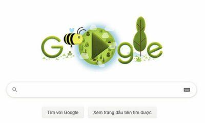 Google Doodle tôn vinh Ngày Trái Đất bằng hình ảnh loài ong   The Thaiger