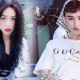 Vụ đại chiến song Trần: Trần Đức Bo dọa đánh hotgirl 'trứng rán cần mỡ' nếu không được Trần Thanh Tâm xin lỗi | The Thaiger