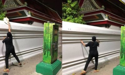Woman charged after abandoning cats at Wat Pho | The Thaiger
