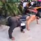 Koh Tao residents caught without face masks made to do push-ups and jumping jacks – VIDEO | The Thaiger