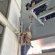 Thieving monkey safely caught in Chon Buri | The Thaiger
