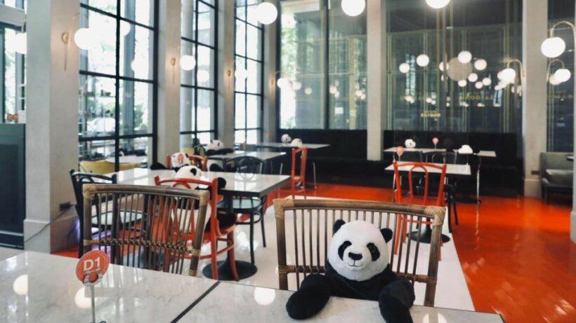 Social distancing pandas fill empty seats at Bangkok restaurant   News by Thaiger