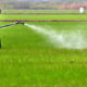 90 day deadline for farmers to hand over banned agrochemicals | The Thaiger