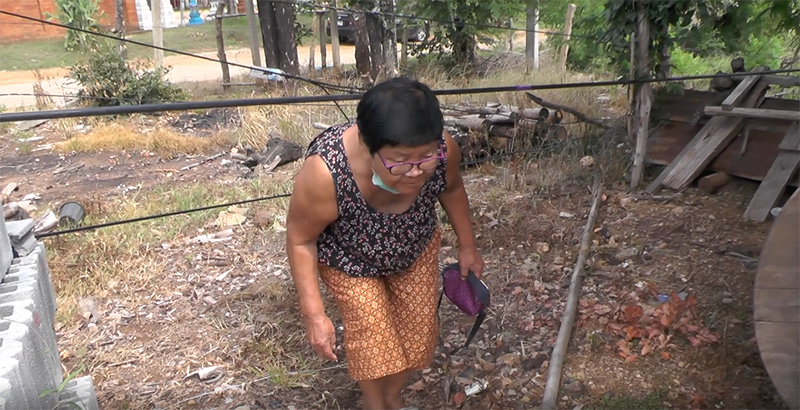 Villagers in central Thailand in a tangle over cables | News by Thaiger