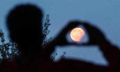 Siêu trăng: 7 sự thật kỳ lạ có thể bạn không biết | The Thaiger