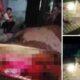 Hòa Bình: Nghi vấn mẹ ôm 3 con nhảy xuống suối tự tử | The Thaiger