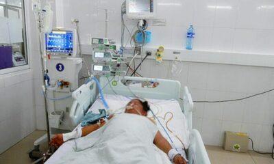 Quảng Ngãi: 3 người tử vong vì ngộ độc nấm | The Thaiger