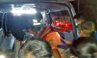 Elephant injures 2 Burmese men in Kanchanburi | Thaiger