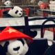Social distancing pandas fill empty seats at Bangkok restaurant | The Thaiger