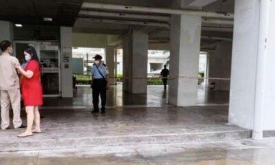TP HCM: Bé trai 12 tuổi rơi từ tầng 10 chung cư Sky Garden tử vong | The Thaiger