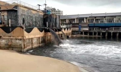 Black water pours into the Gulf of Thailand right next to Pattaya's Walking Street – VIDEO | Thaiger