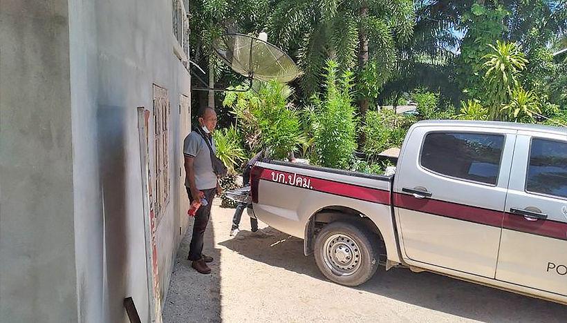 Online marijuana dealer arrested in Nakhon Si Thammarat   News by Thaiger