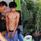 Online marijuana dealer arrested in Nakhon Si Thammarat | The Thaiger