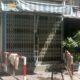 TP. HCM: Hỏa hoạn lúc rạng sáng khiến 1 người chết, 3 người bị thương | Thaiger
