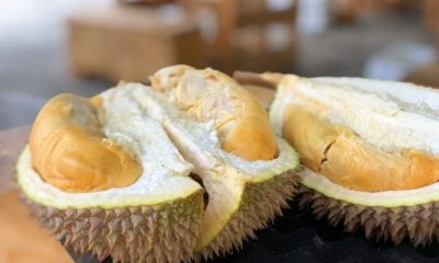 Durian sends 6 to hospital due to smelly 'mystery' package | Thaiger
