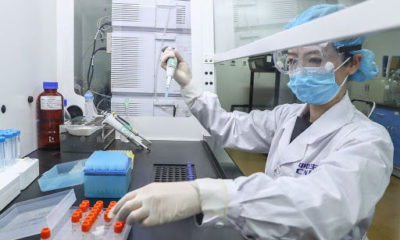Update on Asia's quest for a Covid-19 vaccine | Thaiger