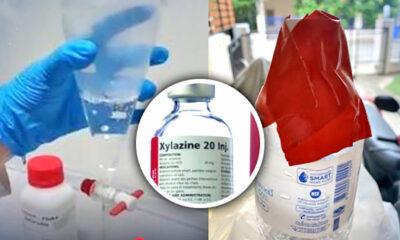 Animal sedative found in runner's water bottle | Thaiger