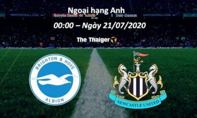 Nhận định bóng đá trận Brighton vs Newcastle – Ngoại Hạng Anh 2019/20 – (0h00 ngày 21/7): Liệu có trắng tay? | Thaiger